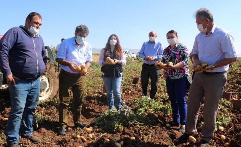 Kaymakam Tortop, patates hasadını inceledi