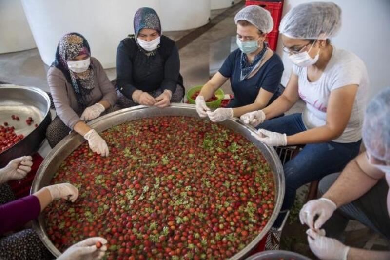Kooperatifçi kadınlar doğal meyveleri reçele dönüştürüyor