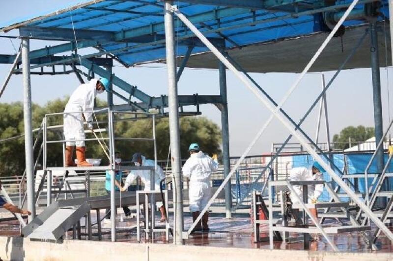 Kocasinan Belediyesi, Kurban Bayramı öncesi hazırlıklarını tamamladı