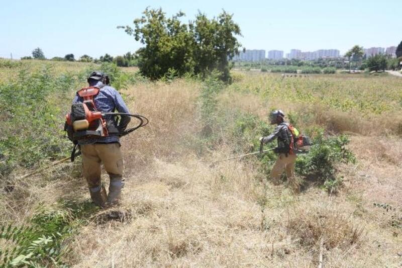 Aratos'un anıt mezarı için kazı çalışmaları başlıyor