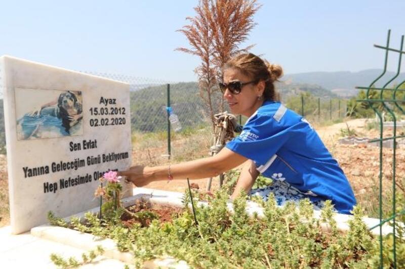 Hayvan Hakları Federasyonu'ndan Mezitli hayvan mezarlığına ziyaret