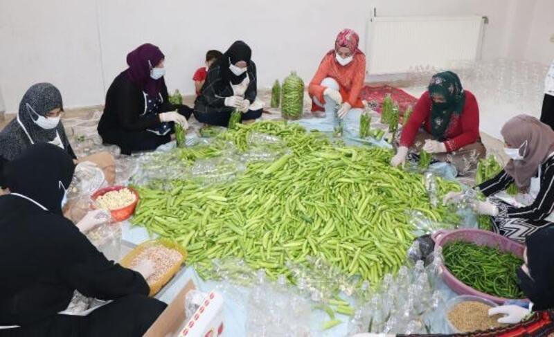 Midyat'ta kadınların turşu mesaisi