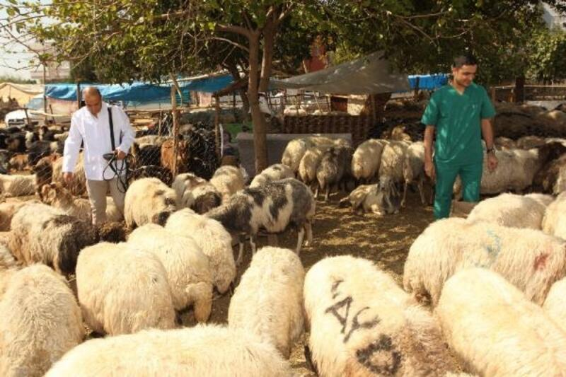 Seyhan Belediyesi'nden 'Kurban Bayramı' çalışması