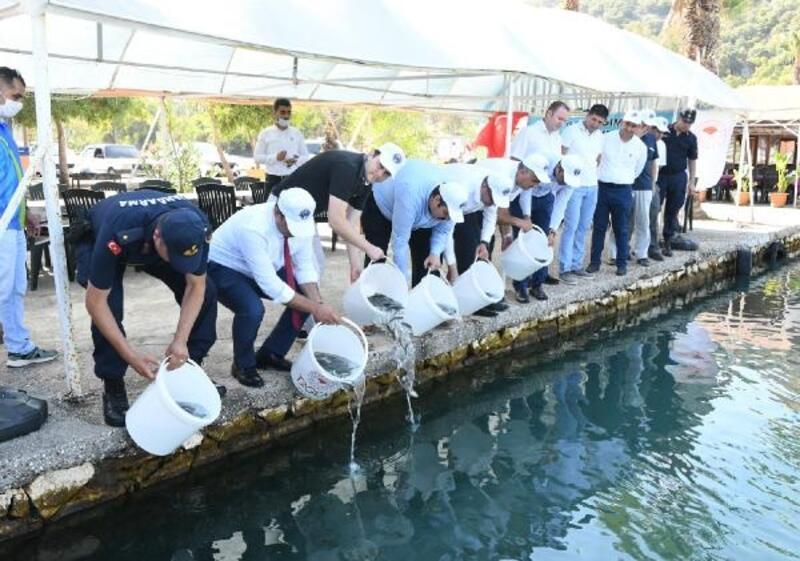 Yavru balıklar Akdeniz'le buluştu
