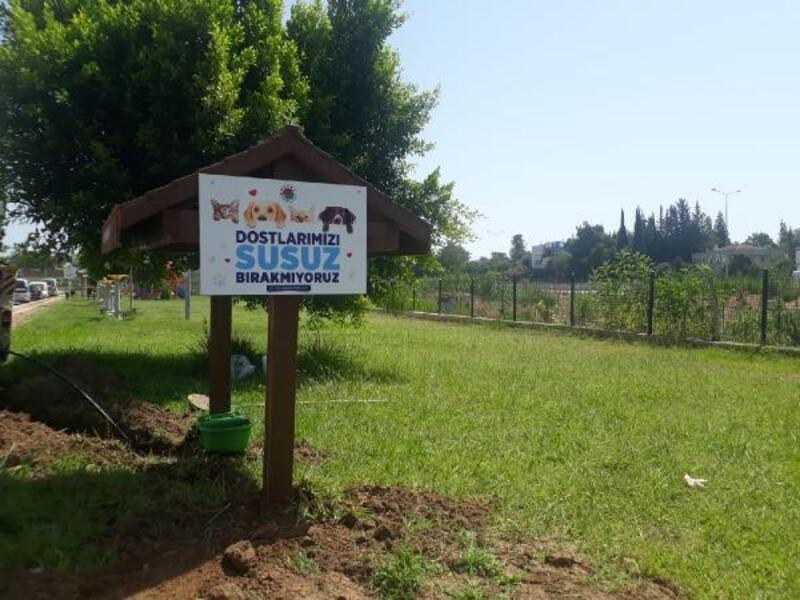 Kepez'den can dostlara ahşap, gölgelikli mama ve su istasyonu