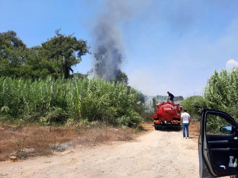 Sorgun Çamlığı'nda yangın