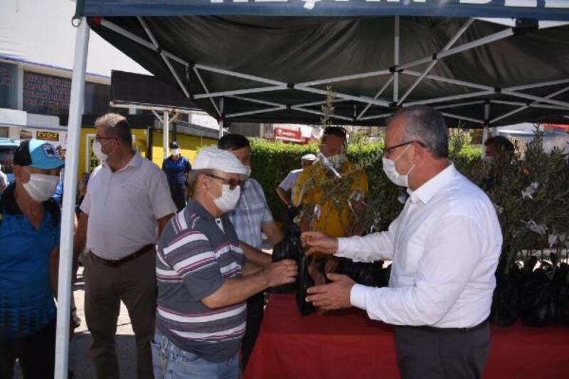Keşan Belediyesi, Dünya Barış Günü'nde 1000 zeytin fidanı dağıttı
