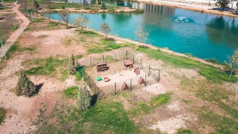 Elbistan'da kedilere özel park yapıldı
