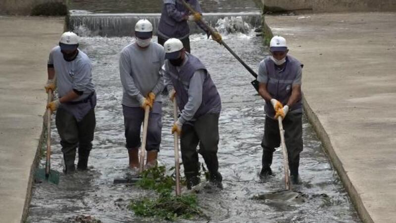 Tokat'ta, Behzat Deresi'nde temizlik çalışması