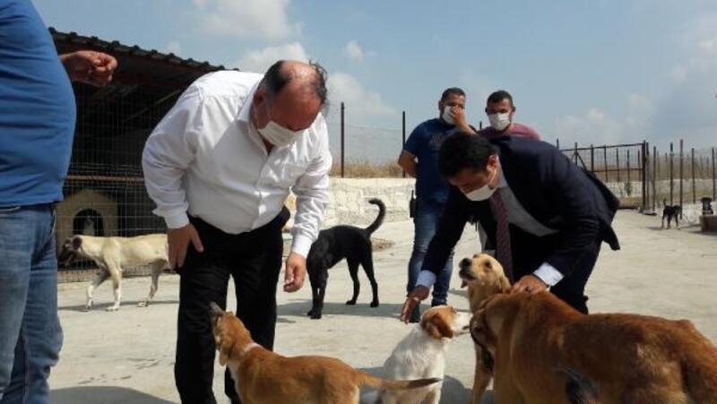 Kaymakam Arık ve Başkan Tarhan'dan barınağa ziyaret