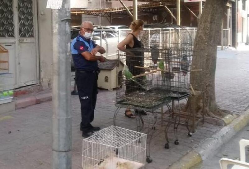 Akdeniz zabıtası pet shopları denetledi