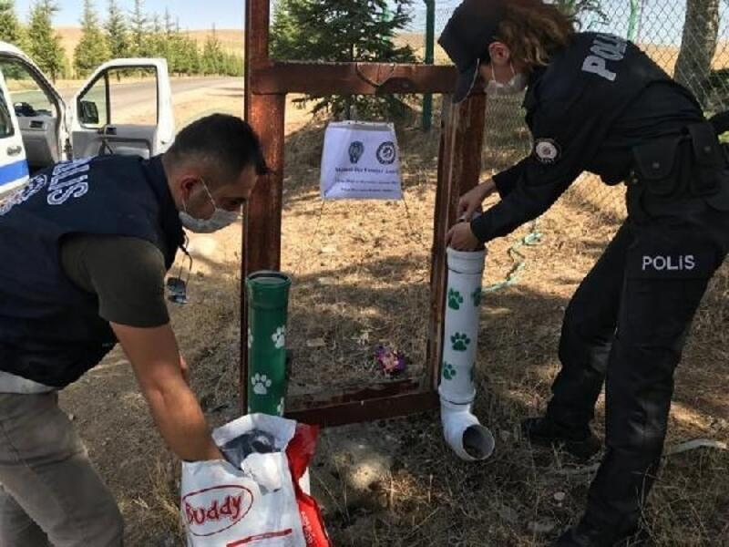 Kırşehir'de polisten sokak hayvanlarına mama