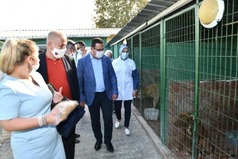 Yıldırım'da Başkan Yılmaz'dan Sahipsiz Hayvan Bakım ve Tedavi Merkezi'ne ziyaret