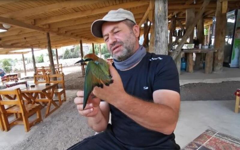 Arı kuşunu kurtarıp, eliyle su içirdi