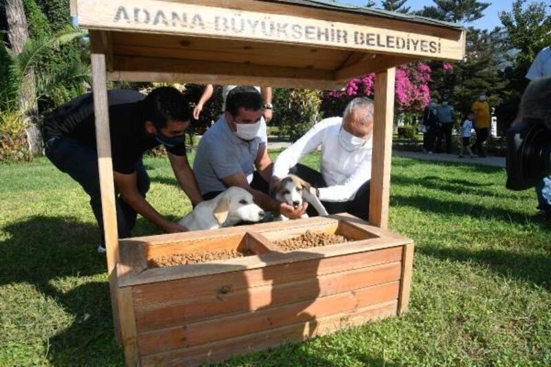 Adana'nın parklarına mama istasyonu ve suluk yerleştirildi
