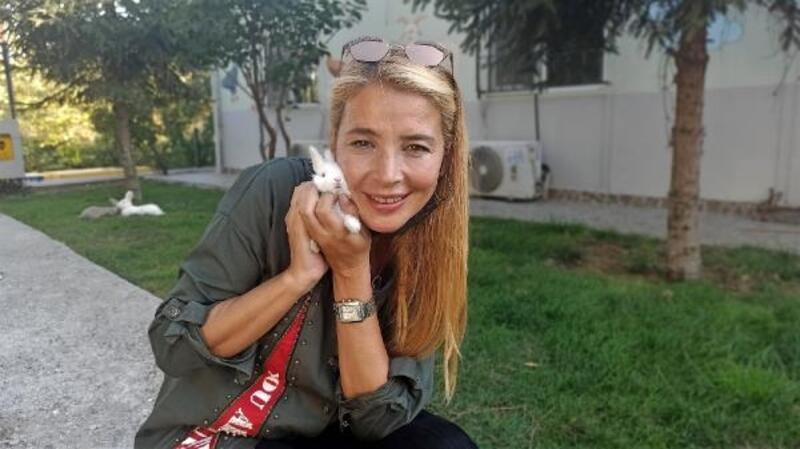 DOSABSİAD Başkanı Çevikel: Hayvana şiddet cana zarar vermek olarak cezalandırılsın