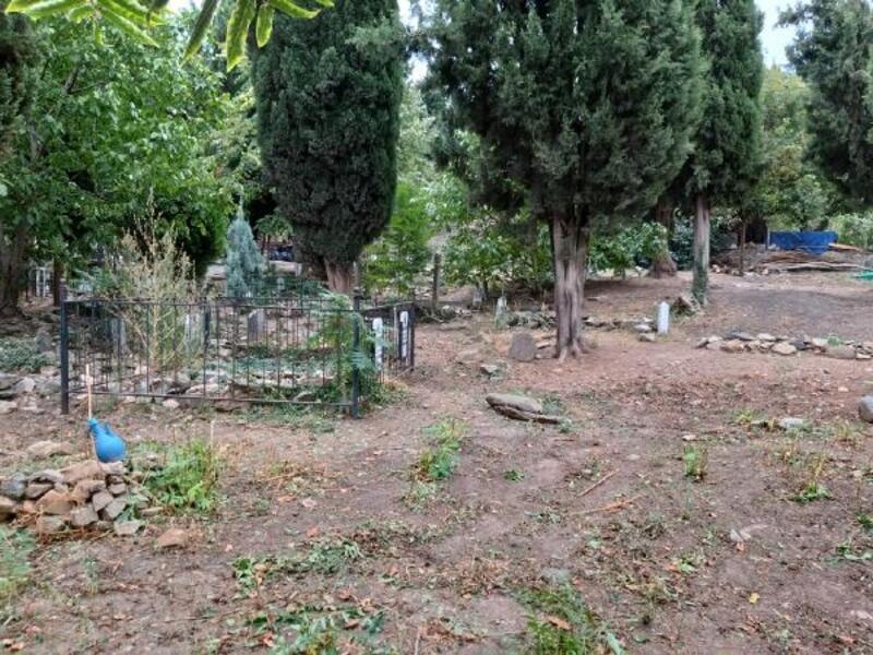 Mezarlıklarda bakım sürüyor