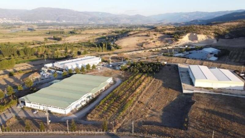 Başkan Özcan: Niksar, tarıma dayalı sanayi ile yükselecek