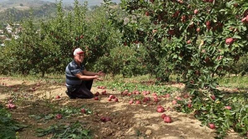 İnegöl'de elma üreticisini fırtına vurdu