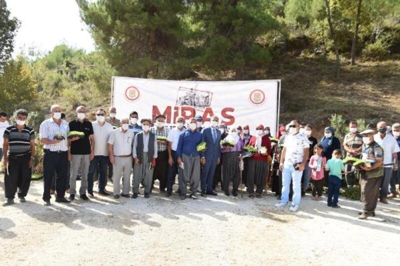 Tarsus Belediyesi bünyesinde tohum bankası oluşturuldu