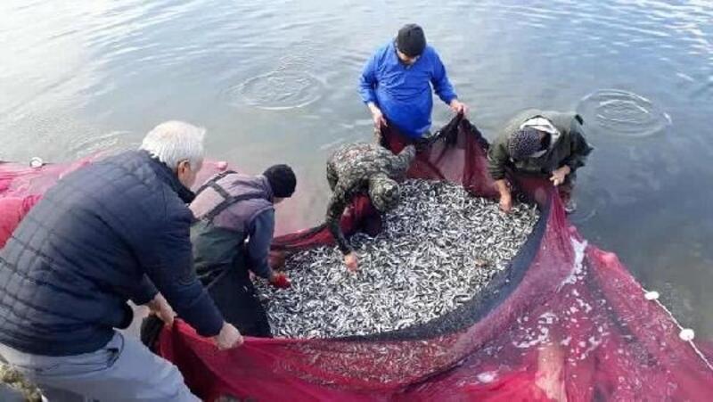Gümüş balığı sezonu kapanıyor
