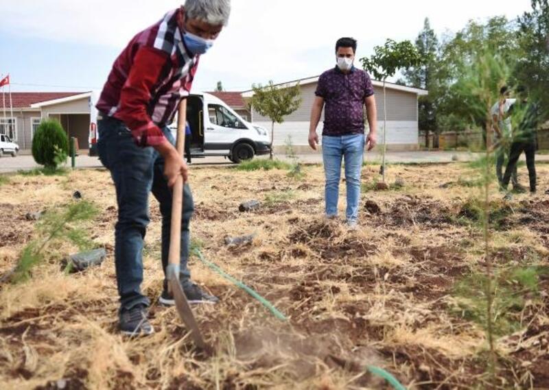 Siverek'te, öğretmen ve öğrenciler okul bahçesine fidan diktiı