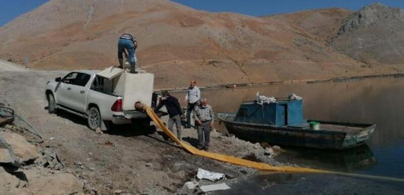 Çelikhan'da baraj gölüne 115 bin sazan bırakıldı