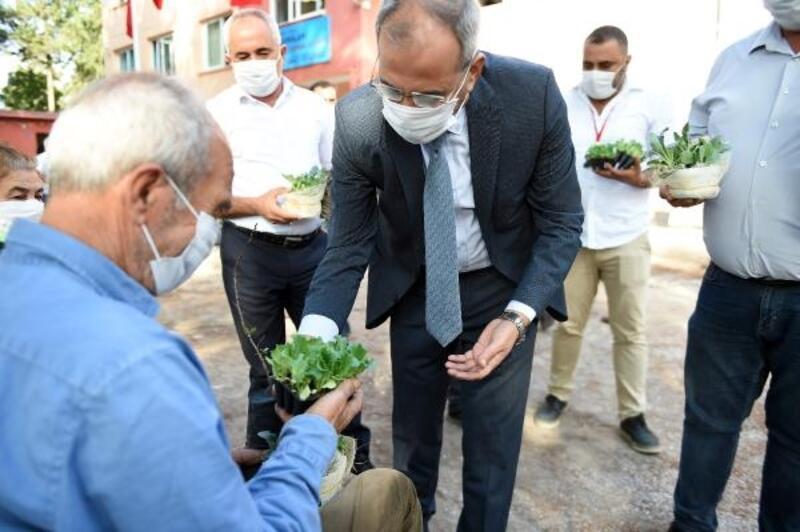 Gen Bankası'nda ata tohum sayısı 20 milyona ulaştı