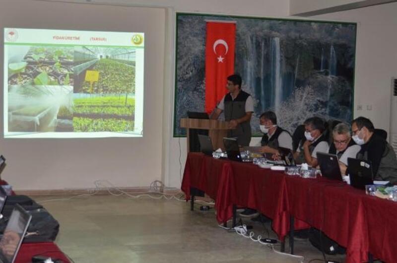 Ormancılık çalışmaları Mut'ta değerlendirildi