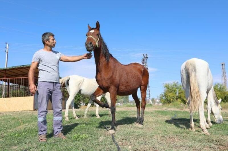 Mezitli'de Mutlu Yaşam Köyü Projesi çalışmaları devam ediyor