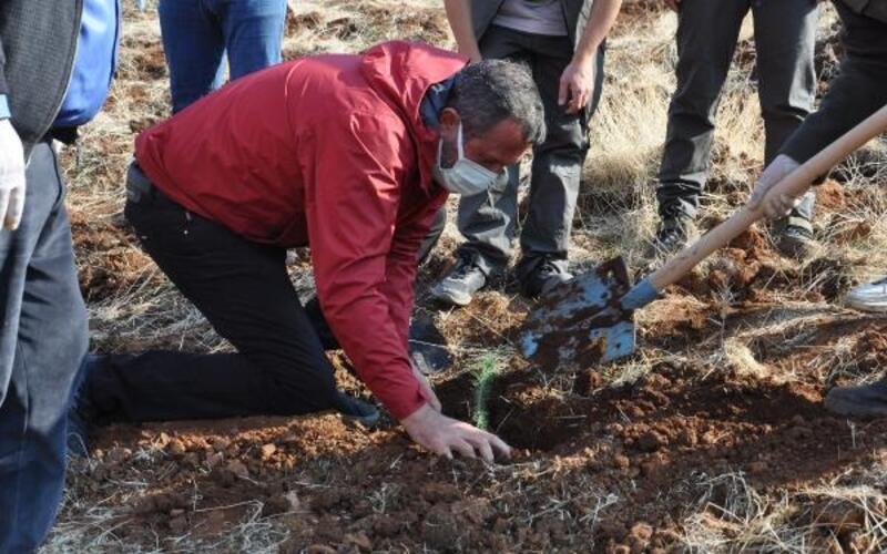 İslahiye'de 2 bin fidan toprakla buluştu