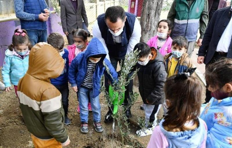 Beyoğlu'nda zeytin ağacı dikme kampanyası başlatıldı