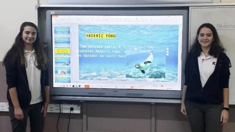 Akdeniz foku okullarda anlatılıyor
