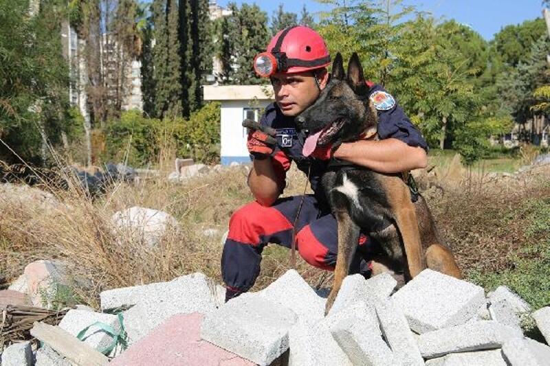 İnsan dostu özel köpeklerin eğitimi sürüyor