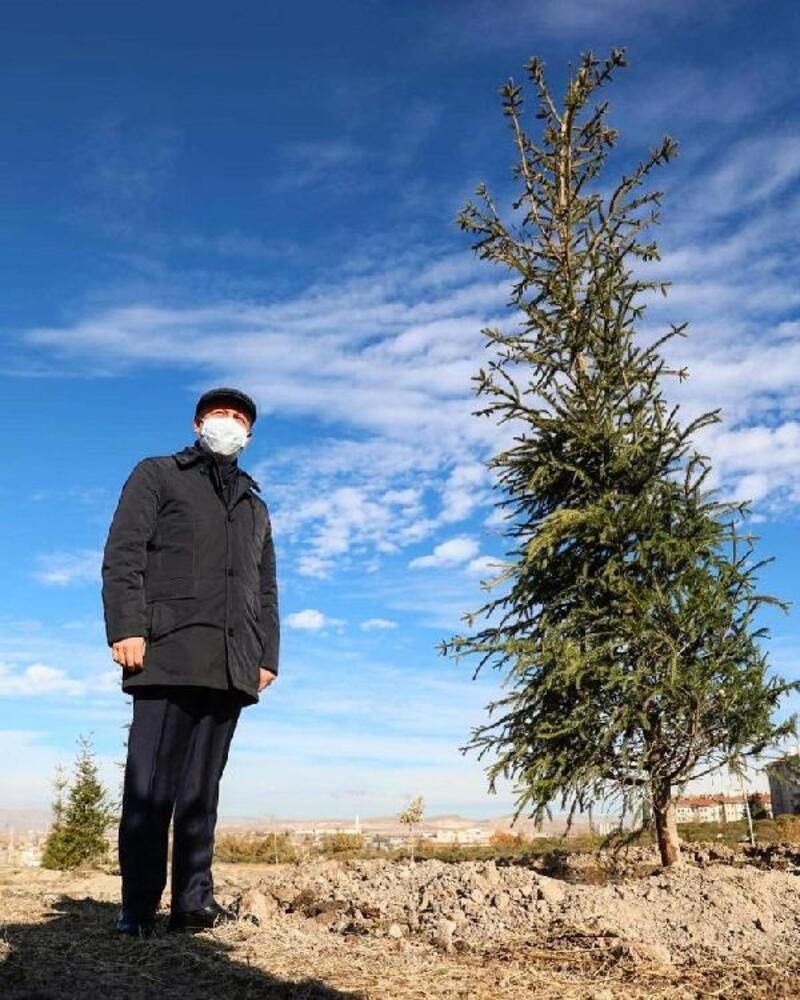 Kocasinan'da ağaçlandırma çalışmaları devam ediyor
