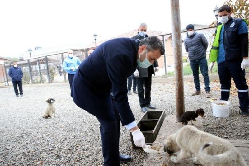 Başkan Eroğlu: Hayvanlar bizlere Allah'ın emanetidir