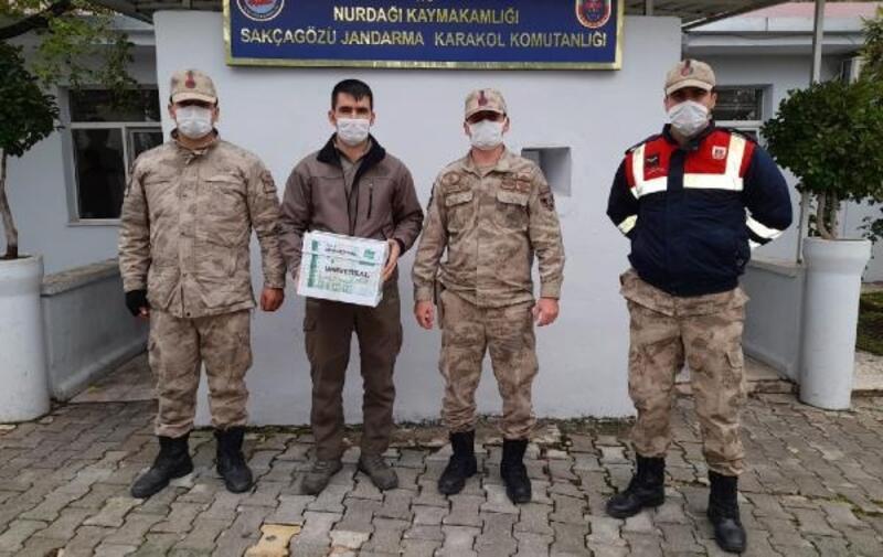 Jandarmanın bulduğu yaralı şahin tedaviye alındı