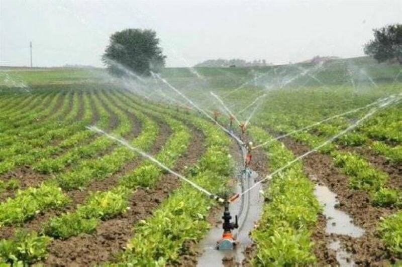 Edirne'de 78 bin dekar tarım arazisi, modern sulamaya kavuşacak
