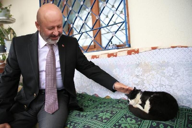 Kocasinan'da 3 bin 410 hayvan tedavi edildi