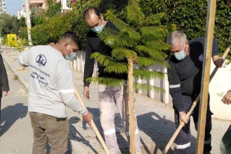 Başkan Tarhan: Yeşil bir Mezitli için her yere fidan dikiyoruz