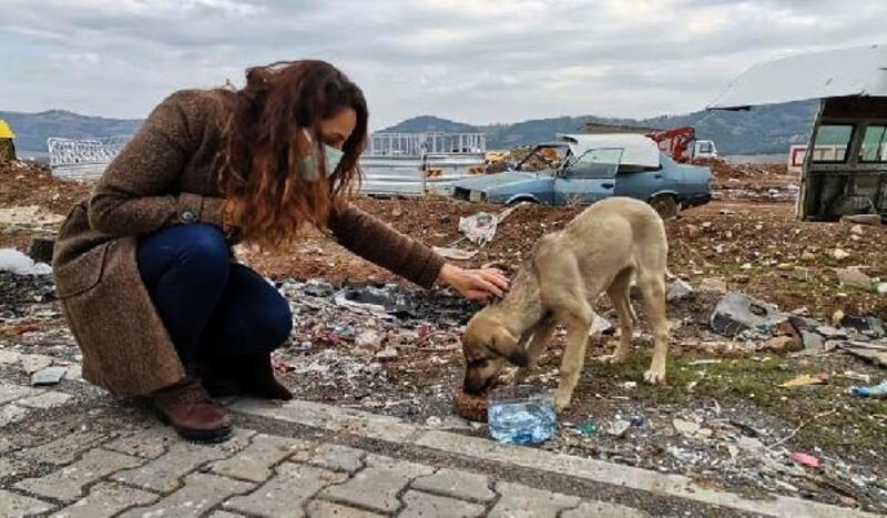 Sokağa çıkma yasağından sokak hayvanları unutulmadı