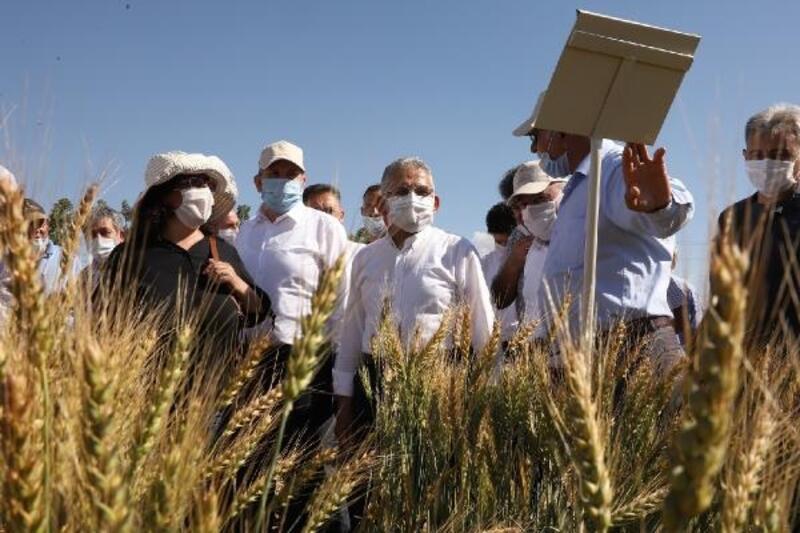 Büyükşehir Belediyesi, tarım ve hayvancılığa 13 milyon 567 bin TL harcadı