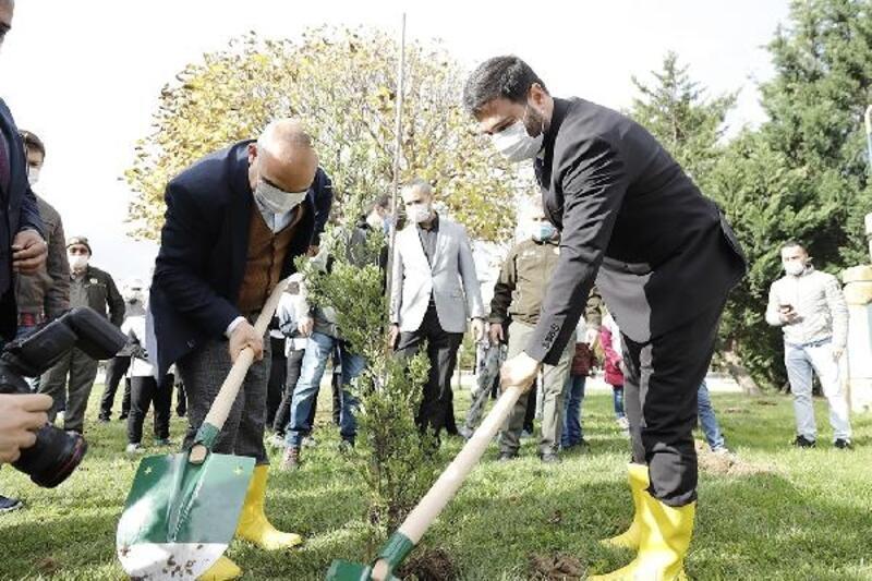 2020 yılında Kağıthane'ye bin 531 ağaç dikildi
