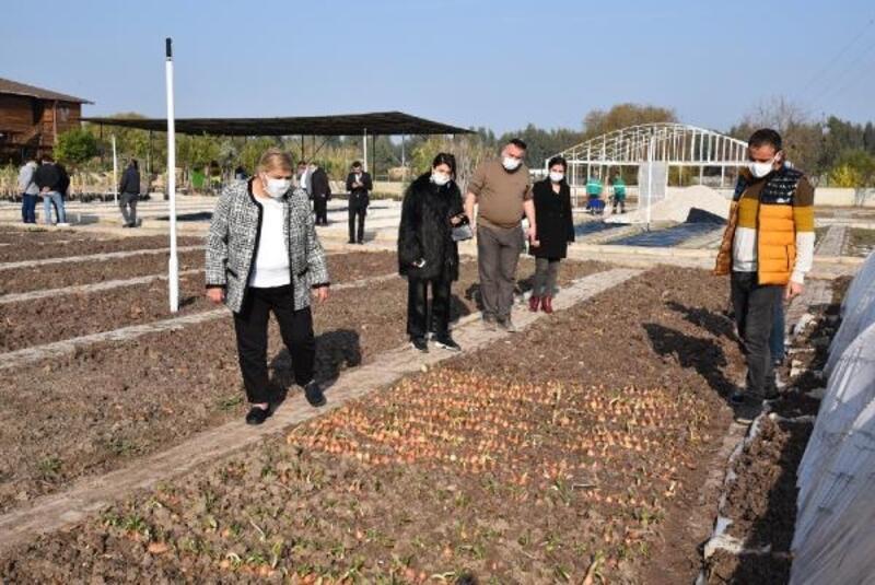 Ceyhan Belediyesi, ihtiyaç sahipleri için sebze ekti