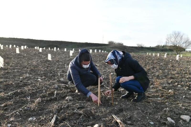Mustafakemalpaşalı çiftçi kara mürver bitkisi ekimine başladı