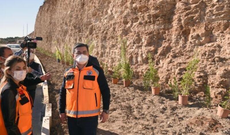 Kepez'den Masa Dağı'na 12 bin adet çiçek