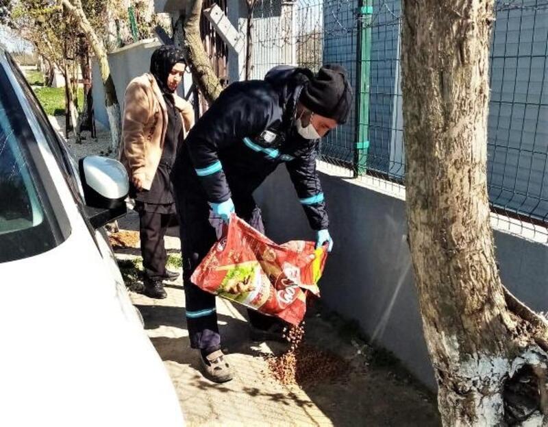 Süleymanpaşa Belediyesi'nden sokak hayvanlarına mama