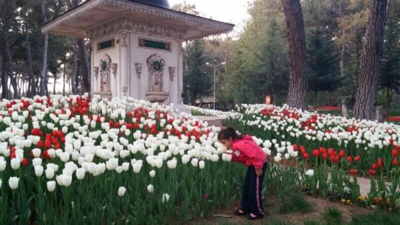 Kepez'in Kent Ormanı 2021 baharına hazırlanıyor