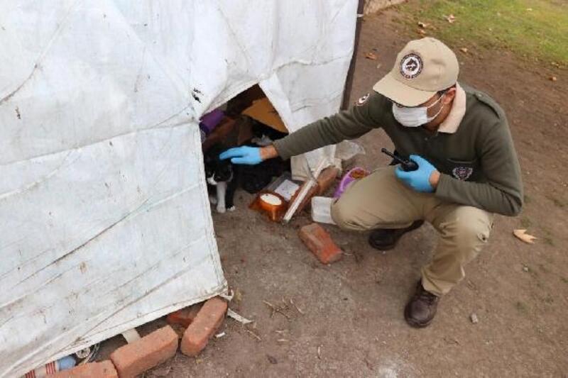 Aç kalan sokak hayvanlarına, koruma ekipleri sahip çıktı