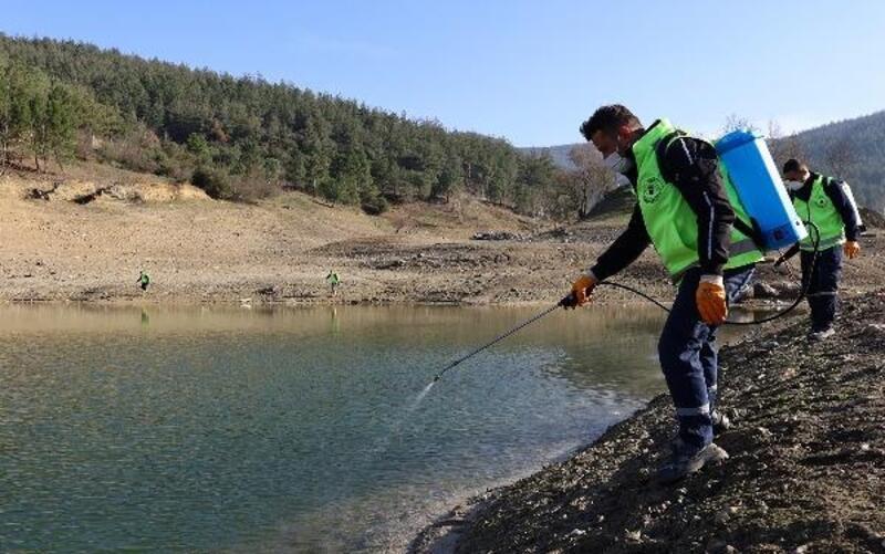 Bursa'da sulak alanlarda sinekle mücadele için ilaçlama yapılıyor